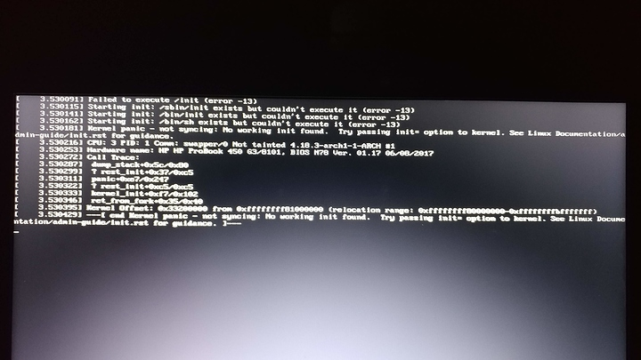 SOLVED] Arch Linux Kernel Panic on Boot - Linux