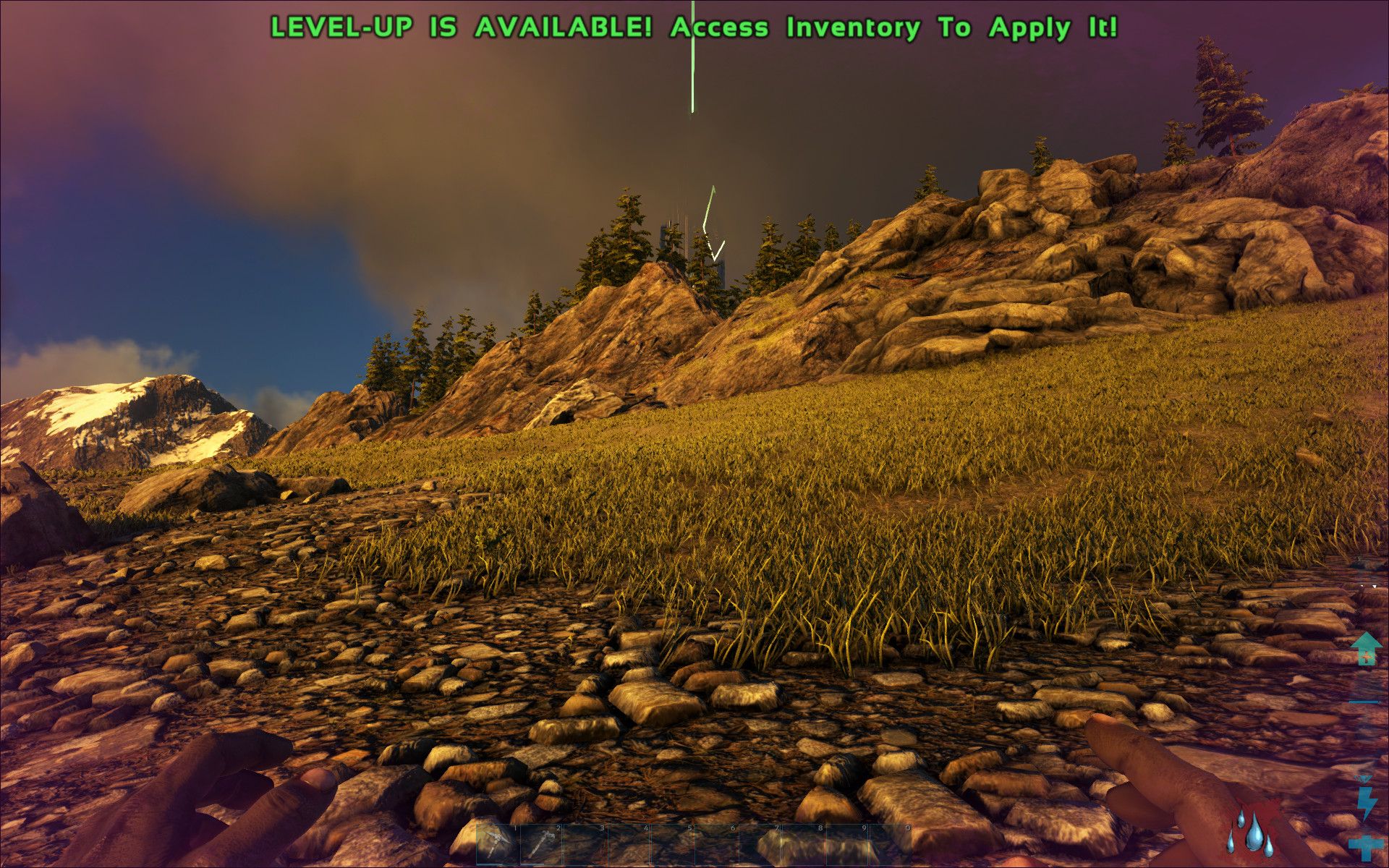 A little teaser of what is to come :) - Linux - Level1Techs