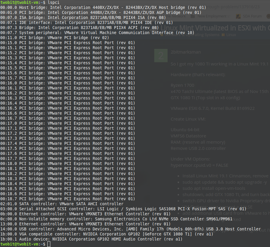 Linux Mint Virtualized in ESXi with GPU Passthrough Problem